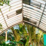 Klimatická krize: Zelené střechy aježdění na kole nás nespasí